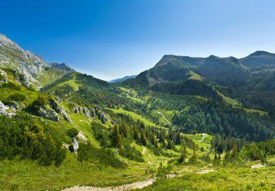 Nằm mơ thấy núi đồi đánh con gì chắc ăn?