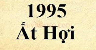 1995 mệnh gì, hợp màu gì, hướng nào?