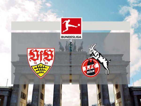 Nhận định soi kèo tỷ lệ Stuttgart vs Cologne, 01h30 ngày 24/10